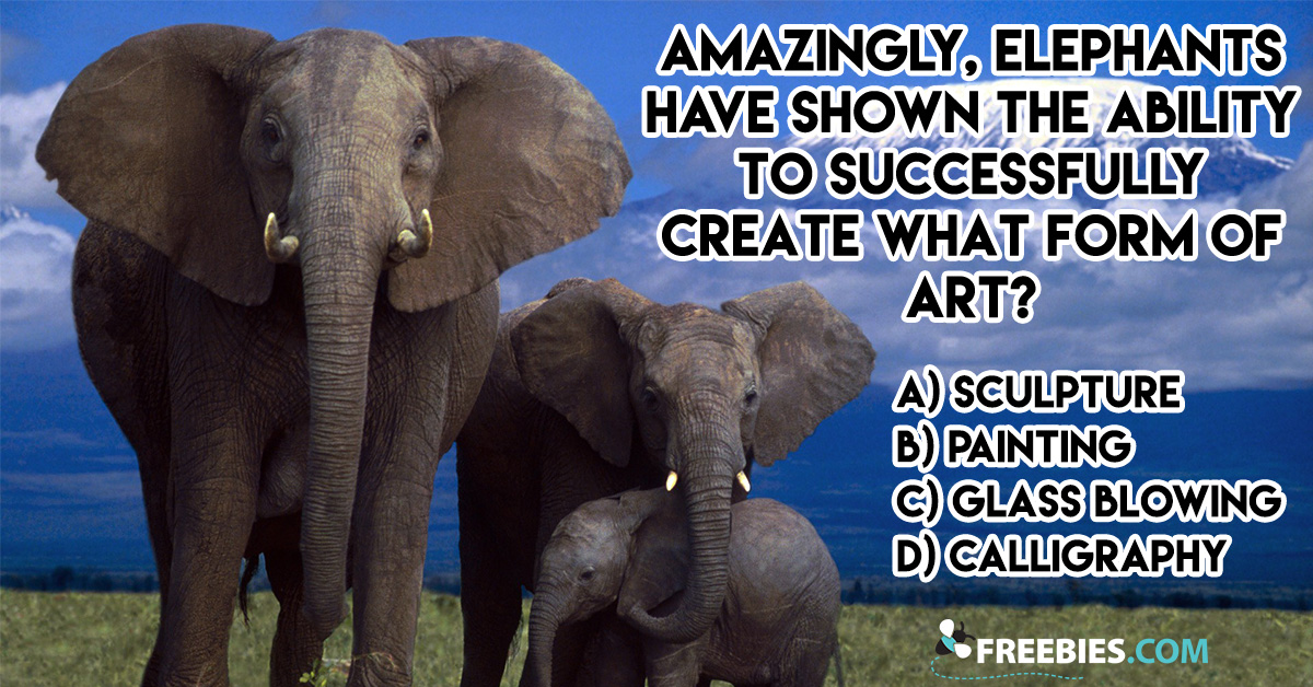 What Form of Art Can Elephants Do?