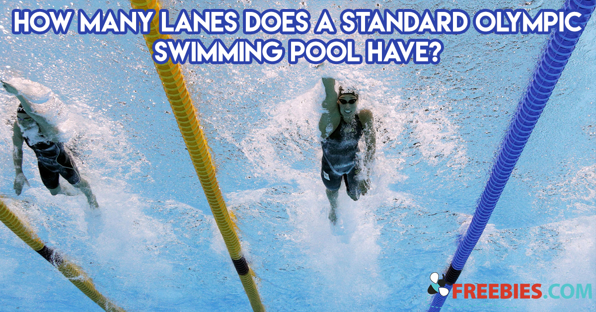 TRIVIA: How Many Lanes Does a Standard Olympic Swimming Pool Have?