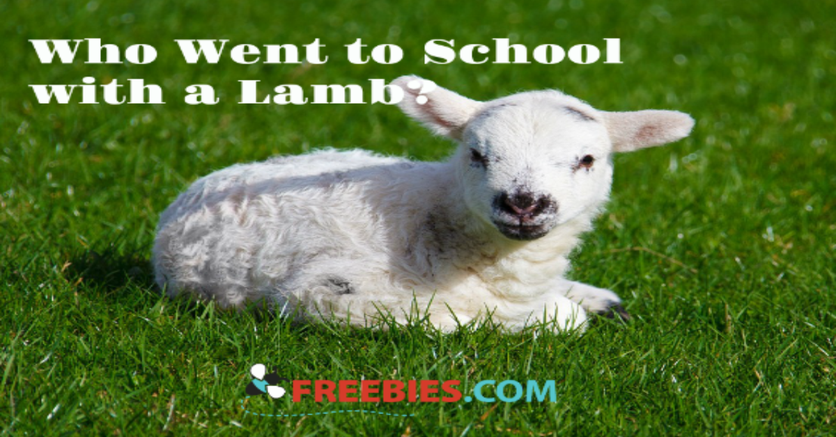TRIVIA: Who Went to School with a Lamb?