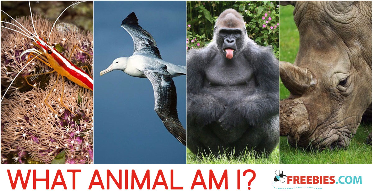 TRIVIA: What Animal Am I?