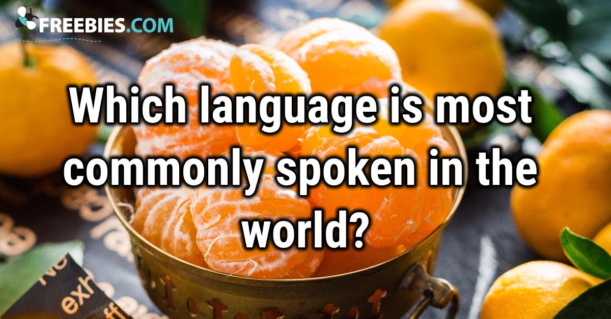 TRIVIA: What language?