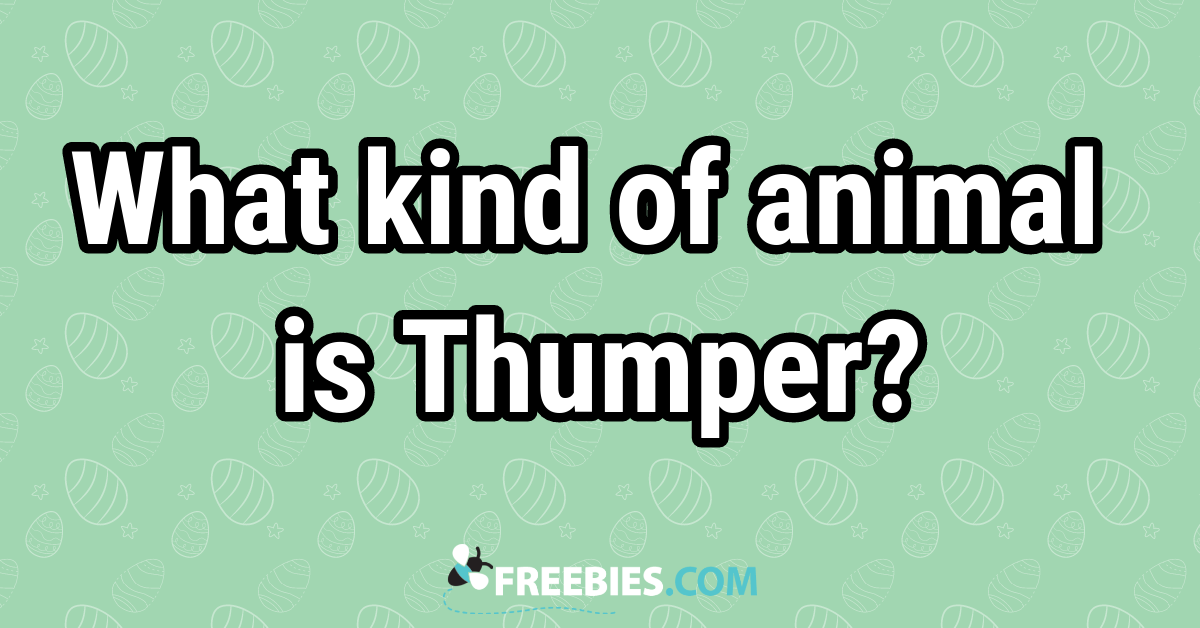 TRIVIA: What kind of creature is Thumper?