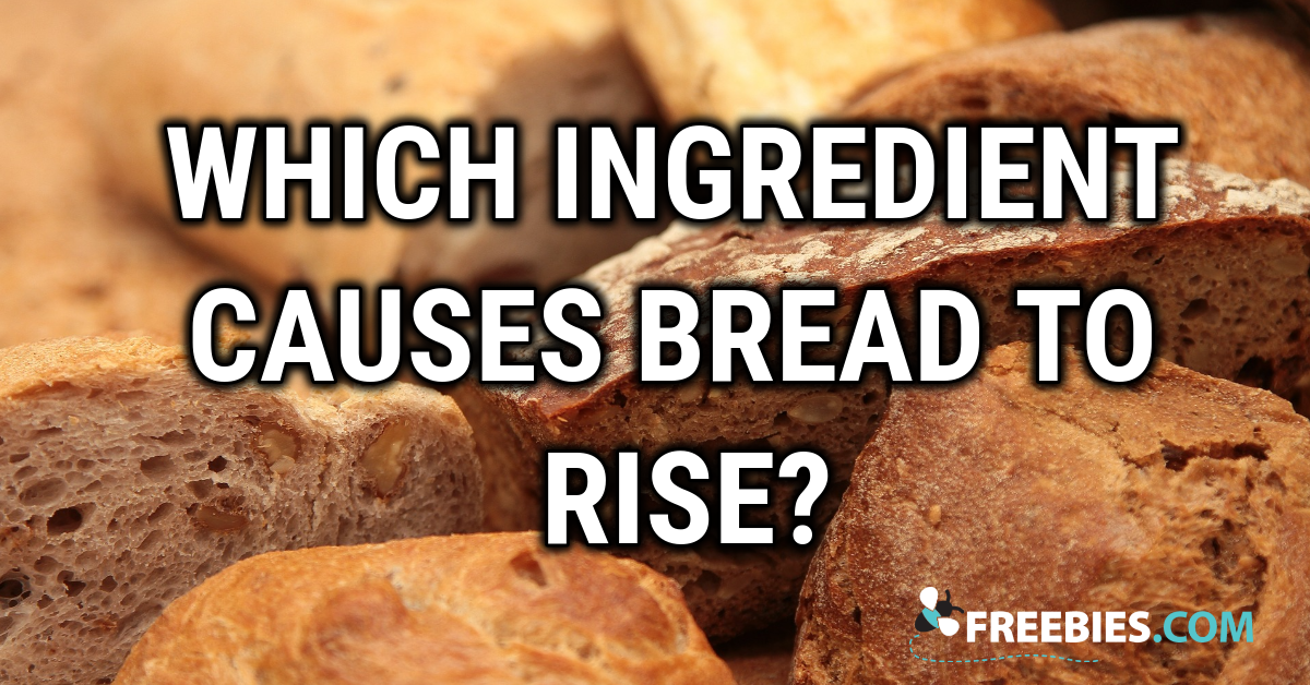 TRIVIA: Which ingredient causes bread to rise?