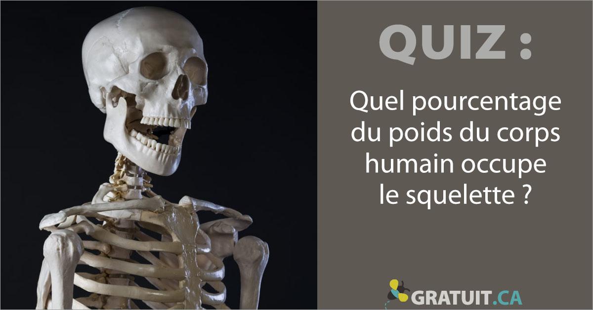 Quel pourcentage du poids du corps humain occupe le squelette?