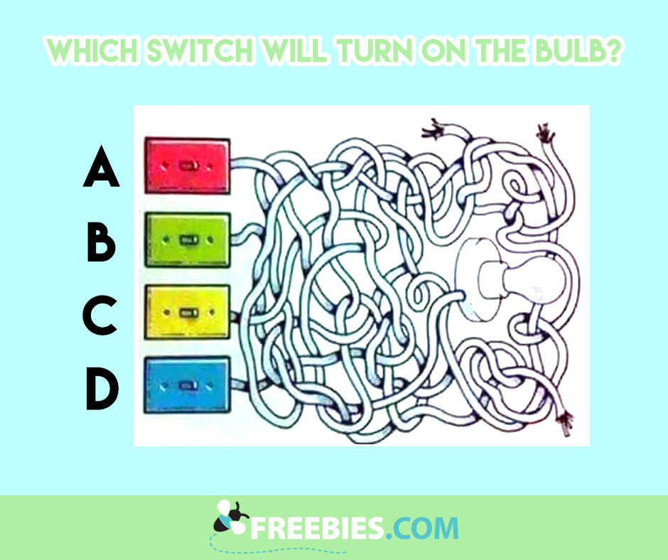 Which Switch Will Turn On The Bulb?