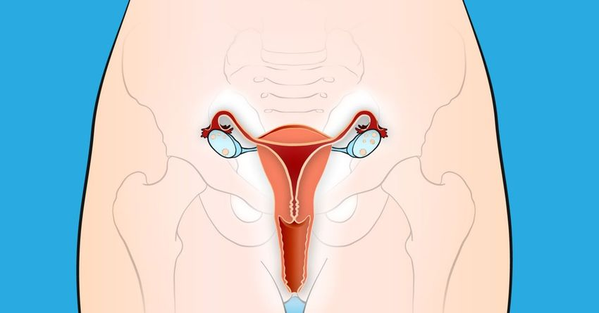 https://storage.googleapis.com/freebies-com/resources/shareables/147/10-early-warning-signs-of-cervical-cancer-that-women-always-ignore.png