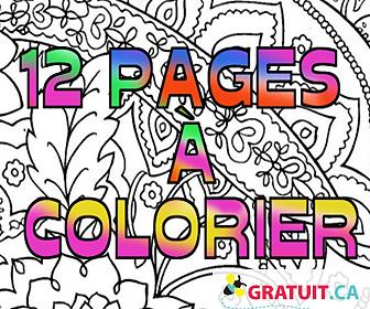 Cahier à colorier pour adulte gratuit