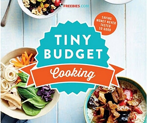 Free Cheap Meals Cookbook