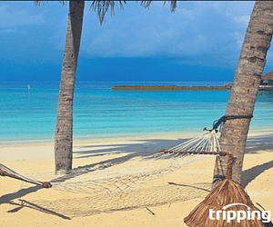 Save Big with Vacation Rentals