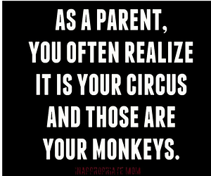 Might  be your circus, but you often aren't the ring leader