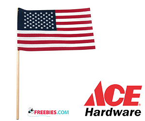 Free American Flags at Ace