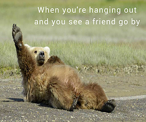 Seeing a friend