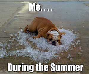 Me During Summer...