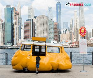 FREE Hot Dog In Brooklyn All Summer Long