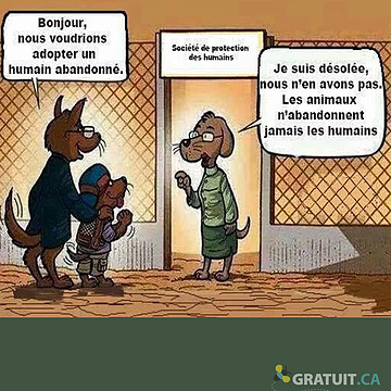 Société de la protection des humains