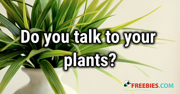 POLL: Do you talk to your plants?
