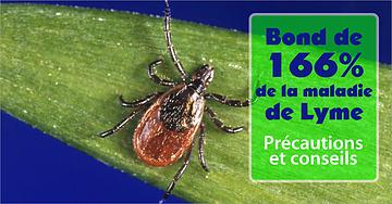 La maladie de Lyme est là pour de bon - protégez-vous!