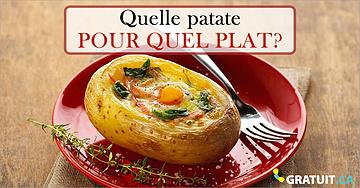 Quelle patate pour quel plat?