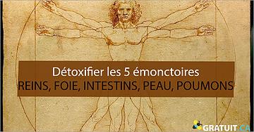 Détoxifier les 5émonctoires - reins, foie, intestins, peau, poumons - pour avoir une santé de fer et une peau radieuse!