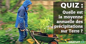 Quelle estla moyenne annuelle des précipitations sur Terre?