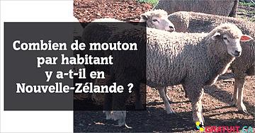 Combien de mouton par habitant y a-t-il en Nouvelle-Zélande?