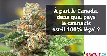 À part le Canada, dans quel pays le cannabis est-il 100% légal?