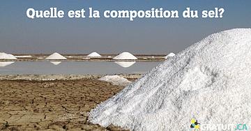 Quelle est la composition du sel?