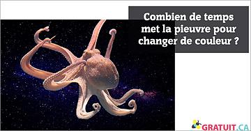 Combien de temps met la pieuvre pour changer de couleur?