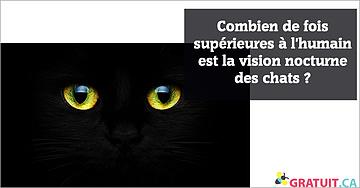 Combien de fois supérieures à l'humain est la vision nocturne des chats?