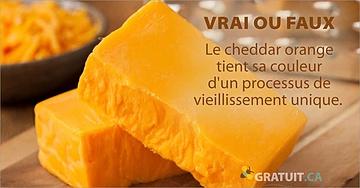 Vrai ou faux : Le cheddar orange tient sa couleur d'un processus de vieillissement unique.
