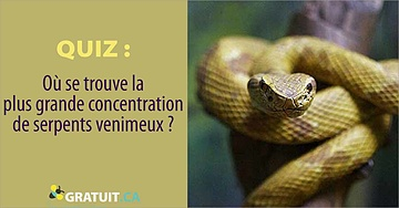 Où se trouve la plus grande concentration de serpents venimeux?t