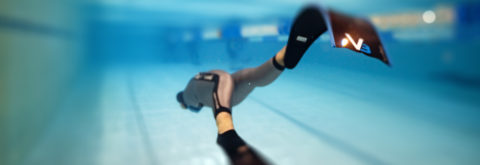 We are working to get Freediving recognized in the UAE