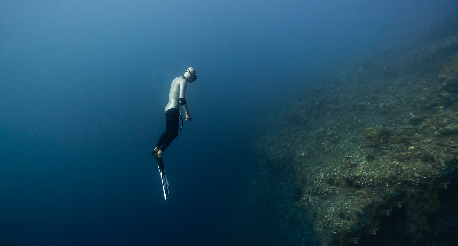Types of diving - Freediving in United Arab Emirates. Courses, Certificates and Equipment