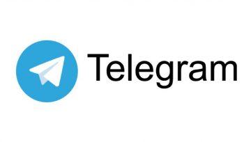 Freediving UAE switching to Telegram