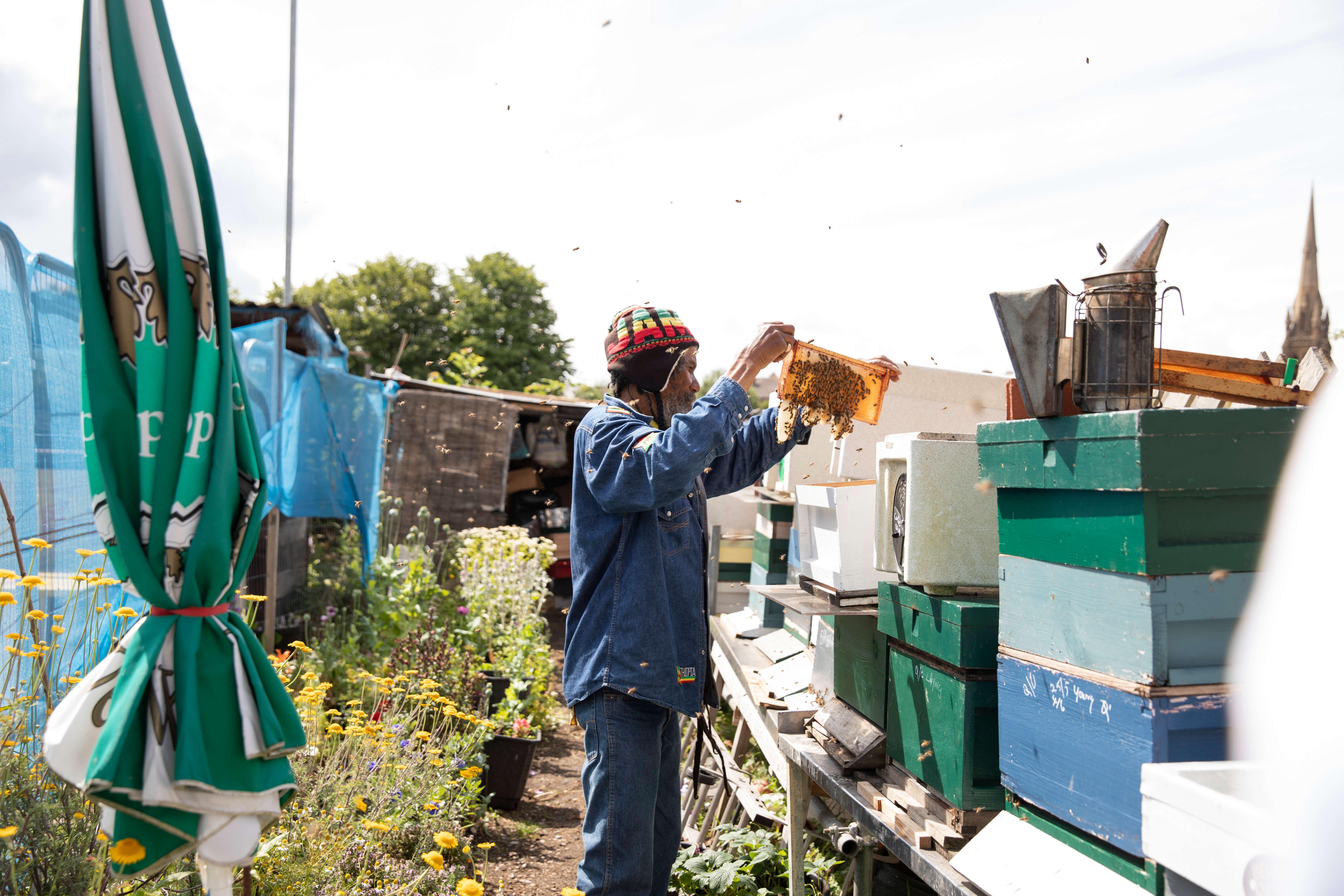 barry the beekeeper