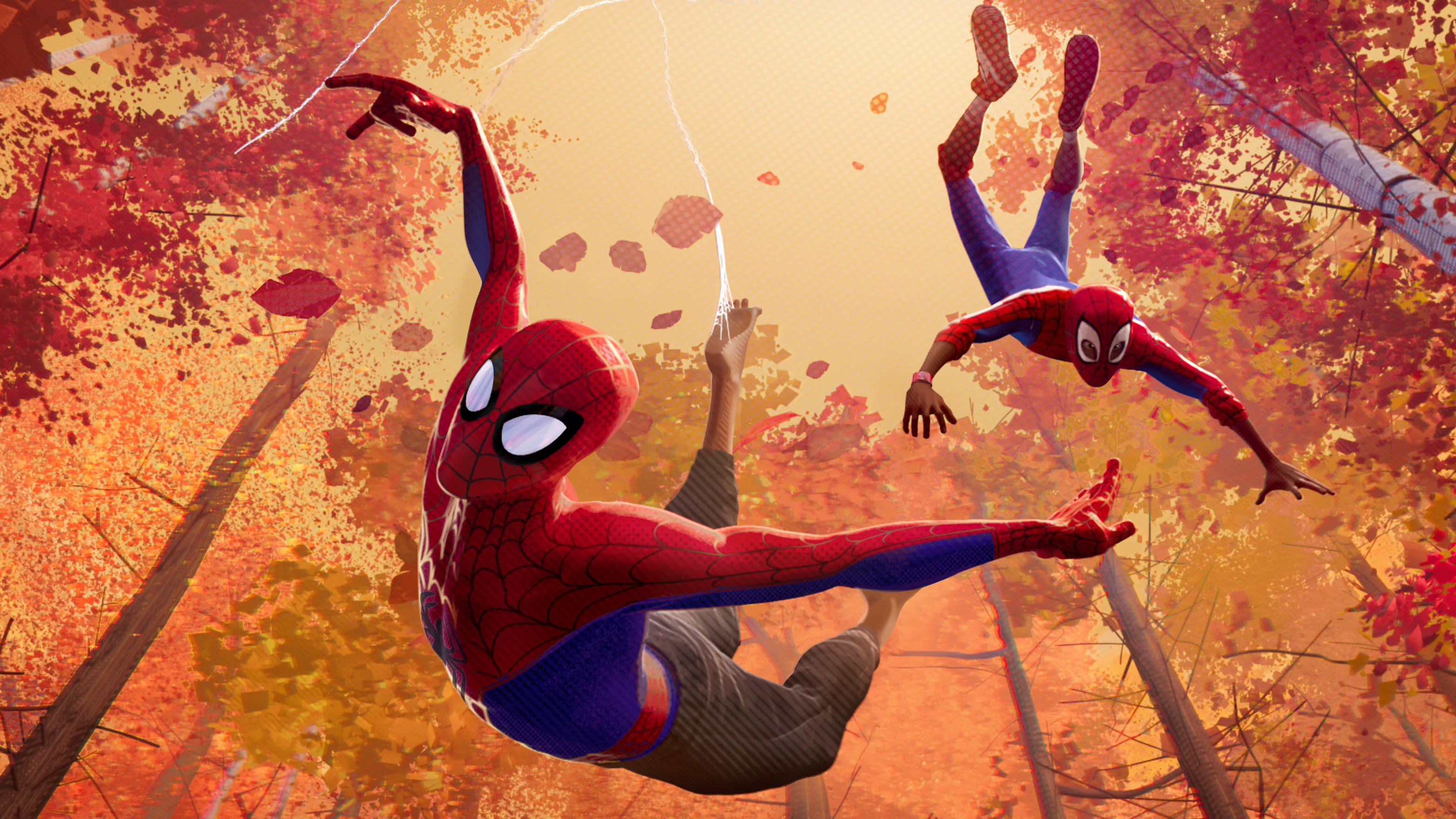 Spiderman into the spideverse