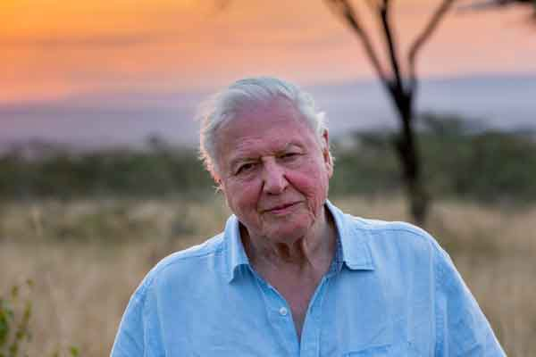 david attenborough on our planet