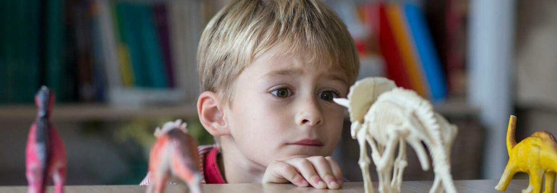 little boy looking at dinosaur figurines