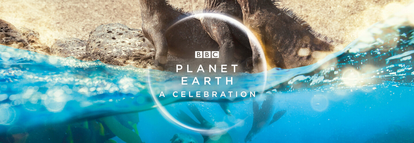 planet earth a celebration banner