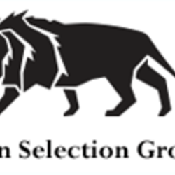 LION SELECTION GROUP LIMITED.