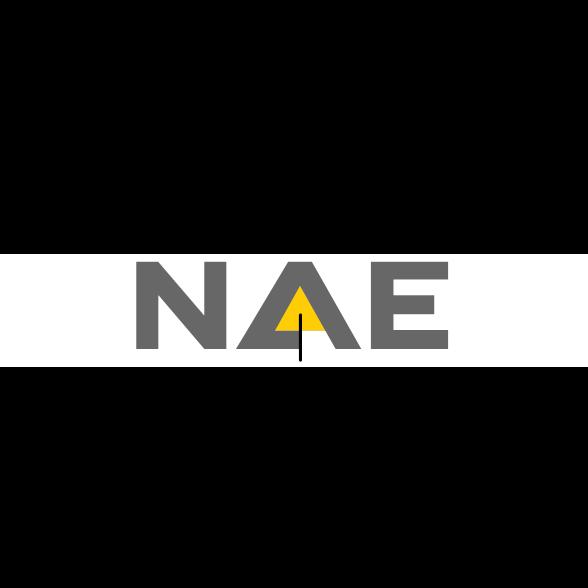 ASX:NAE