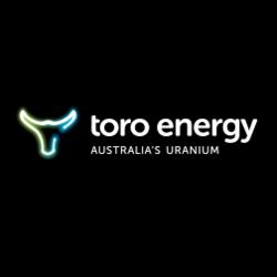 ASX:TOE logo