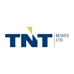 ASX:TIN logo