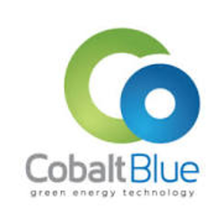 COBALT BLUE HOLDINGS LIMITED