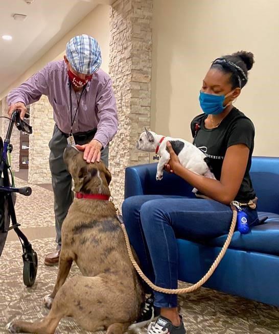 Senior citizen petting a friendly visitor's dog