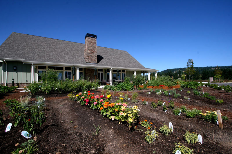 A flower and vegetable garden in the back of a senior living home at Friendsview