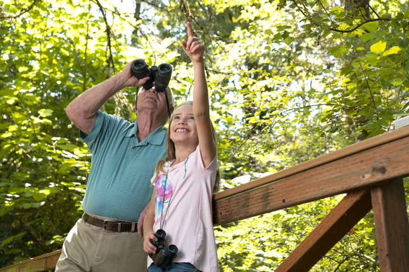 A grandpa and granddaughter go birdwatching