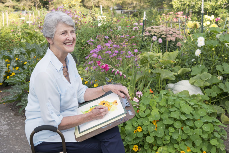 A senior woman sits and sketches yellow flowers in the flower garden