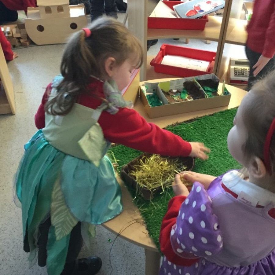 Bringing the farm to nursery
