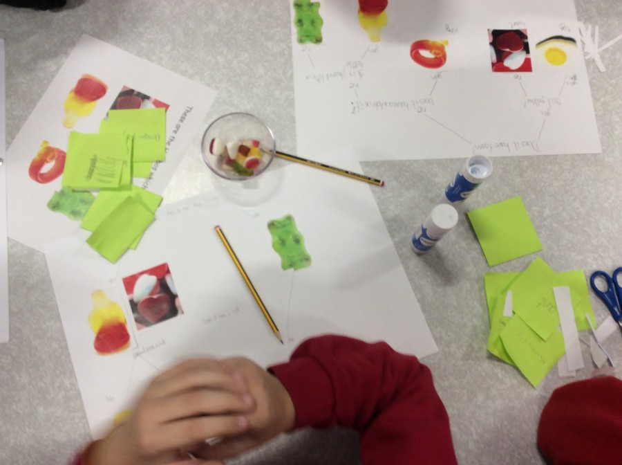 Year 4 Sorting and Classifying Assembly